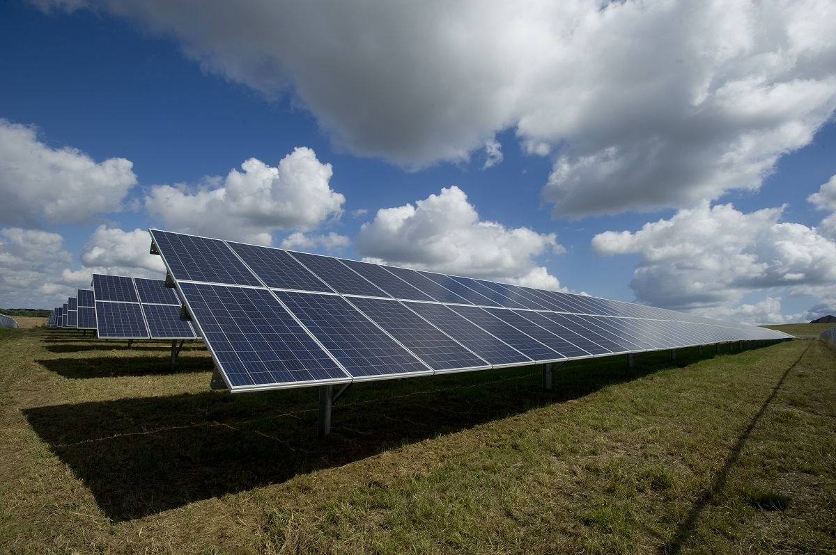 Field with solar panels