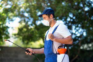 exterminator doing his job