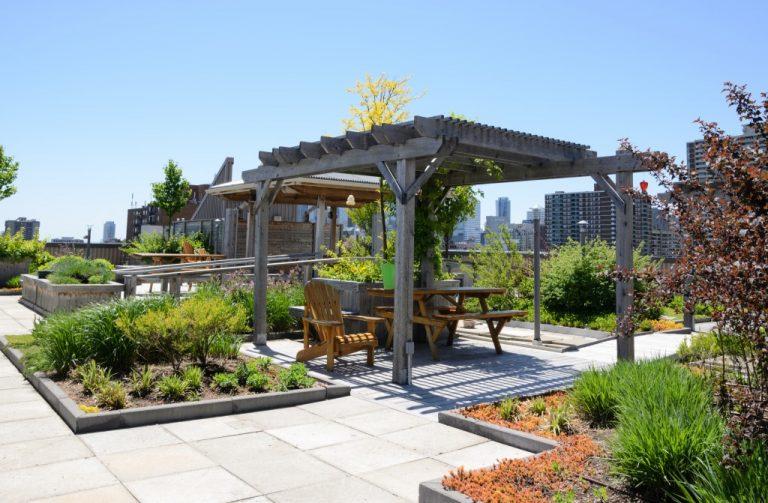 rooftoop garden
