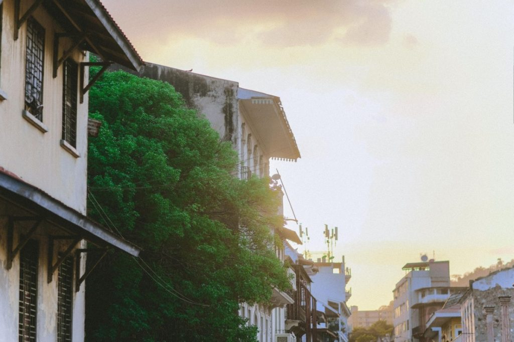 neighborhood at dawn
